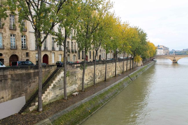 autumn on the seine in paris