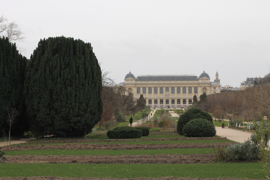 Jardin des Plantes Winter