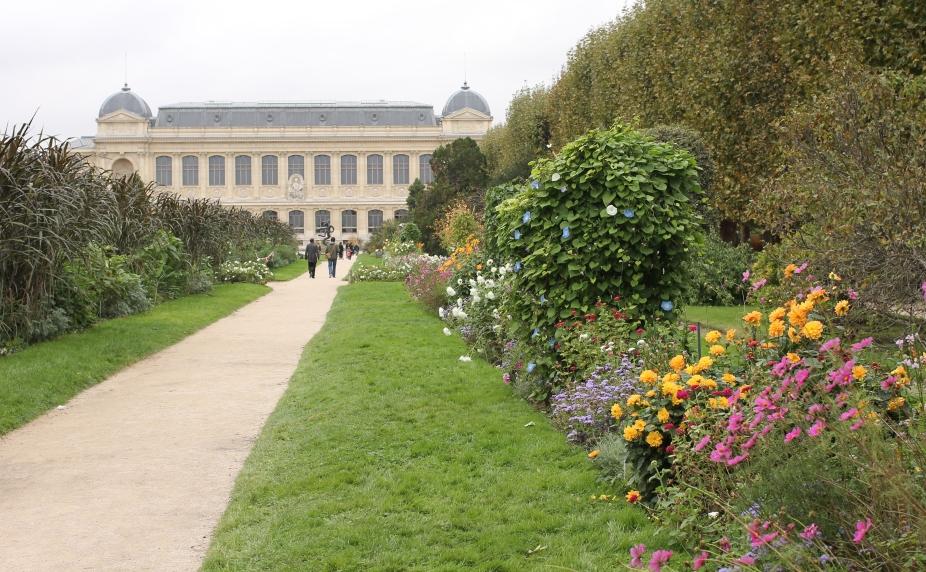 Jardin de Plantes Autumn